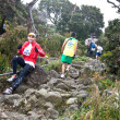 Participants climb up Mt Kinabalu in the International Climbathon - Stock Photo