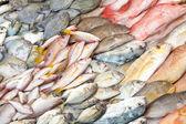 Heaps of fish in wet fish market — Stock Photo