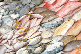 Heaps of fish in wet fish market — Stock Photo
