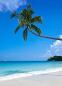 Secluded beach on a tropical island — Stock Photo