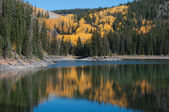 Autumn on the Grand Mesa — Stock Photo