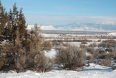 Grand Valley in Winter — Stock Photo