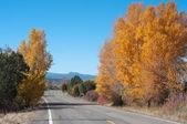 Vega lake road — Stok fotoğraf