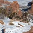 Winter in the Colorado National Monument — Stock Photo