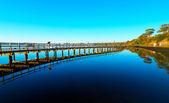 Geelong coastline — Stock Photo