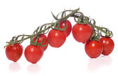 Vine tomatoes cut out — Stock Photo