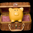 Yellow piggy bank in a hamper — Zdjęcie stockowe
