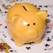 Gamble to save money piggy bank — Stock Photo