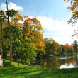 Pond in autumn park — Foto Stock