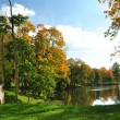 Pond in autumn park - Stock Photo