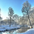 Winter landscape in park at the small river — Stock Photo