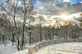 Sunshine over winter park — Stock Photo