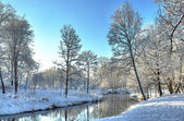 Winter landscape in park at the small river — Stok fotoğraf