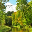 The small river in autumn park — Stock Photo