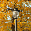 Lamp in park in autumn time — Stock Photo