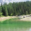 Stock Photo: Little Alpine Lake