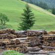 Pile of lumber cut into boards and stacked - Stock fotografie