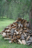Woodshed formed from pieces of wood cut from the lumberjack — Stock Photo
