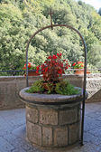 Ancient well for the collection of rainwater and flowers — Stock Photo