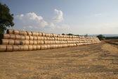 Montanha de muitos fardos de feno para secar ao sol abrasador — Foto Stock