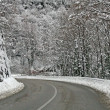 Dangerous curve into an icy road in a cold winter - Stock Photo