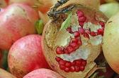červená šťavnatá zralá semena granátového jablka pootevřené — Stock fotografie
