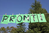 Written ready in Italian PRONTI with green leaves hanging — Stok fotoğraf