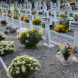White crosses and graves of elderly nuns in a cemetery — Stock Photo