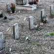 Little graves of children died young — Stockfoto