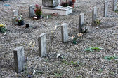 Little graves of children died young — Stock Photo