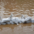 Stock Photo: Wall of sandbags to fend off raging river