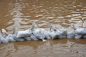Wall of sandbags to fend off raging river — Stock Photo