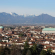 Panorama of the city of vicenza with the Basilica — Stockfoto