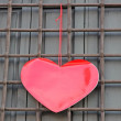 Red heart hanging on the grid on Valentine&#039;s day - Stock Photo