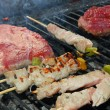 Skewers of meat  grilled on the barbecue in the garden — Stock Photo