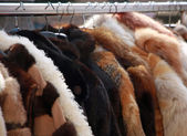 Vintage furs for sale at flea market — Stok fotoğraf