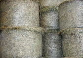 Shed of a farm with many bales of hay to feed the animals — Stock Photo
