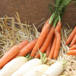 Carrots and turnips on the straw sold at local market — Stock Photo