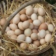 Old wicker basket with eggs laid on a soft straw from farmer — Foto de Stock