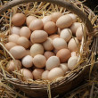 Fresh eggs just laid on a bed of fluffy straw sold at local mark — Stock Photo