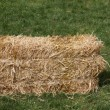 Block dry straw cube deposed on green lawn — Stock Photo