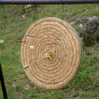 Shoot arrows from a bow that struck the target circle — Foto de Stock
