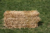 Block dry straw cube deposed on green lawn — Stockfoto
