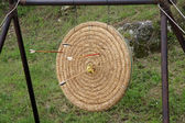 Shoot arrows from a bow that struck the target circle — Stock Photo