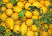 Wallpapers of ripe lemons from Sicily yellow excellent to make l — Stock Photo