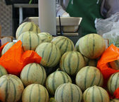 Mature melons just picked up for sale by grocery store — Stock Photo