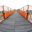 Pedestricycle bridge to cross River with fish eye view — Stock Photo #26258363