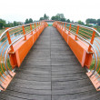 Pedestrian bridge and Bike Trail over the river — Stock fotografie