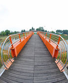 Pedestrian cycle bridge to cross the river — Stock Photo