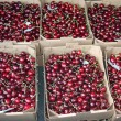 Crates full and basket of great and juicy ripe red cherries on s — Stock Photo #26761465